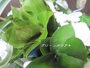 2011_0731_102819img_2654_2