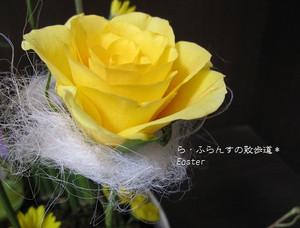 2012_0330_084503img_1699