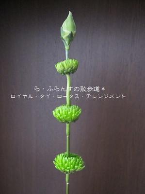 2012_0406_085642img_1730