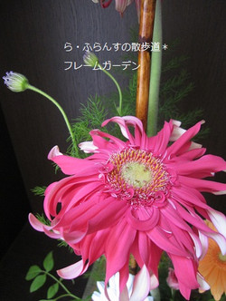 2012_0526_082340img_2371