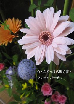 2012_0526_082400img_2372