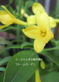 2012_0526_082428img_2373