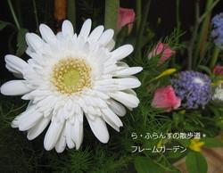 2012_0526_082454img_2375