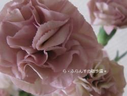 2012_0609_144819img_2460