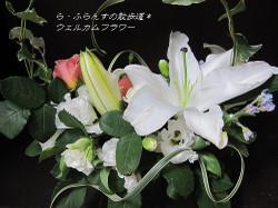 2012_0615_084154img_1182