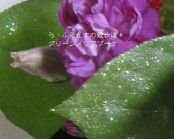 2012_0929_092318img_1743