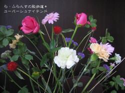 2012_1013_085722img_1816