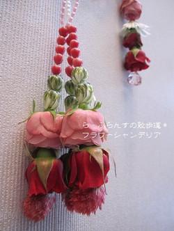 2013_0125_085843img_2582