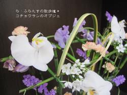 2013_0201_092348img_2609