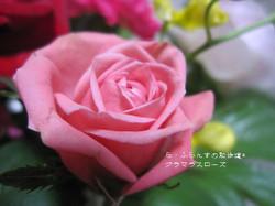 2014_1004_093706img_6766