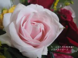 2014_1004_093807img_6771