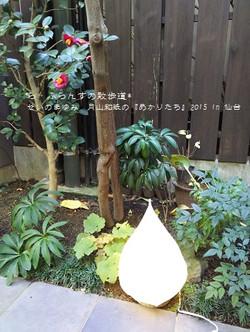 151128141347256_photo