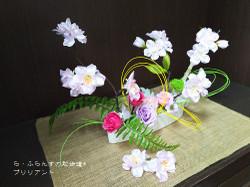 160117104545024_photo