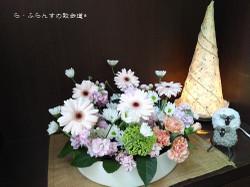 160420084037551_photo
