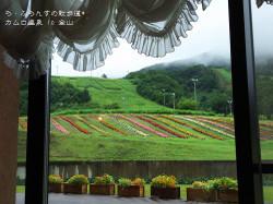 160709122156740_photo_2