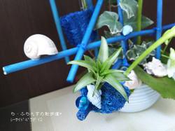 160722074242908_photo