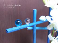 160722074257391_photo