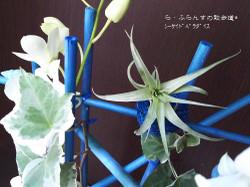 160722074355709_photo