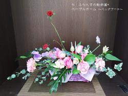 170129095559373_photo
