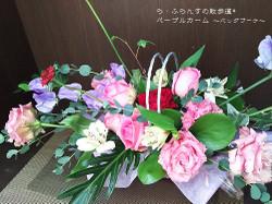 170129095607009_photo