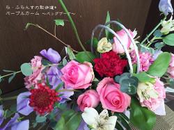 170129095735271_photo