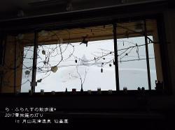 170225091838454_photo