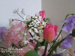 170310082017964_photo_2