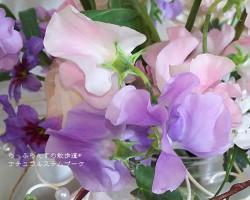 170310082212366_photo
