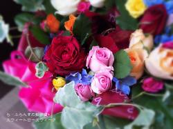 170519075659584_photo