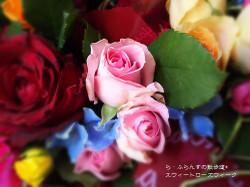 170519075754962_photo