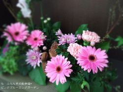180303084911529_photo