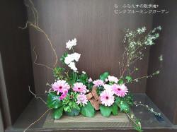 180303085048033_photo